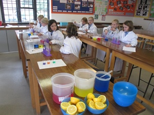 Year 2 in the science lab